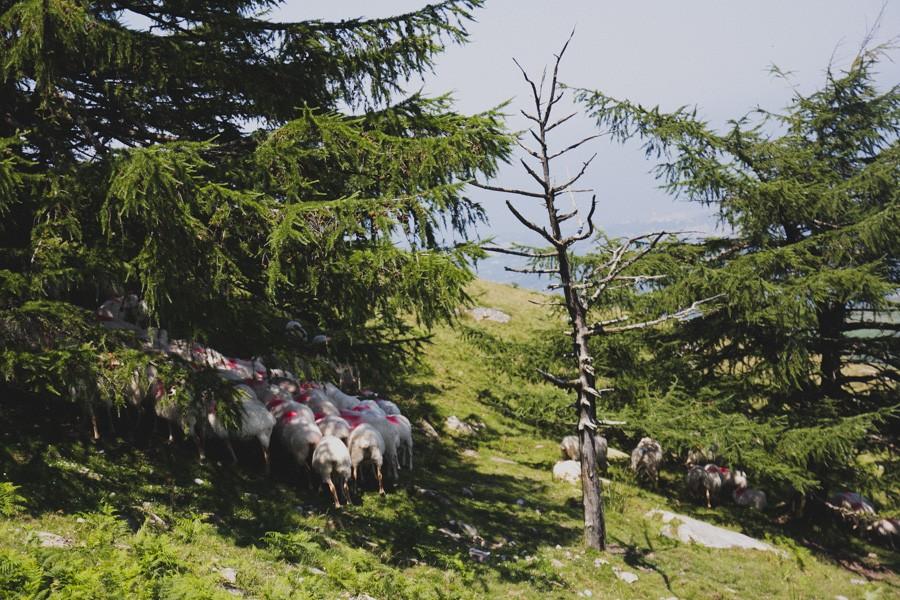 landscape-basque-003